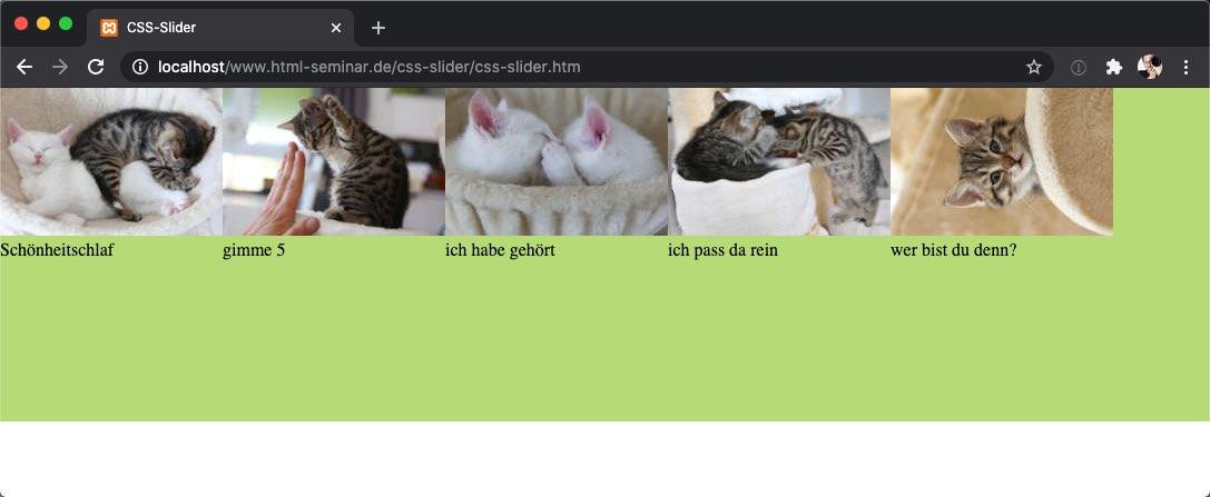css-slider-katzenfotos-04.jpg