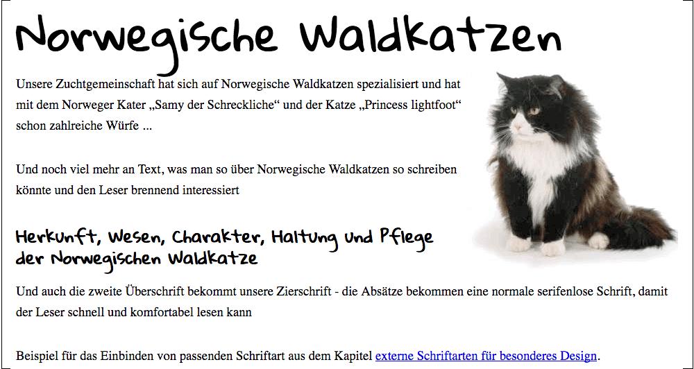 norwegische-waldkatzen-beispiel.png